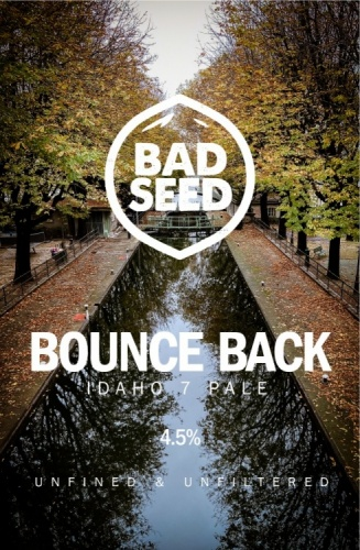 Bad Seed Bounce Back 4.5% 9g (E-Cask)