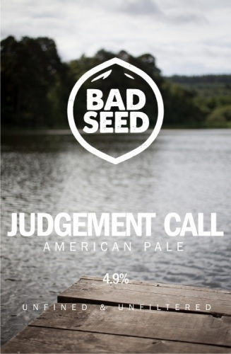 Bad Seed Judgement Call 4.9% 9g (E-Cask)