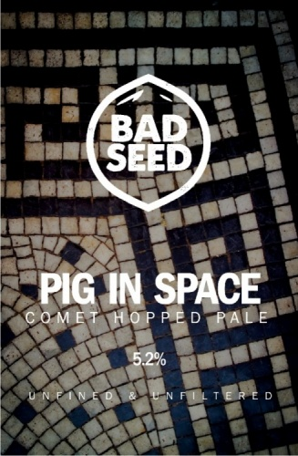 Bad Seed Pig In Space 5.2% 9g (E-Cask)